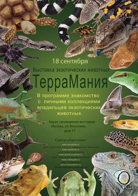 """Вторая межфорумная выставка """"ТерраМания"""""""